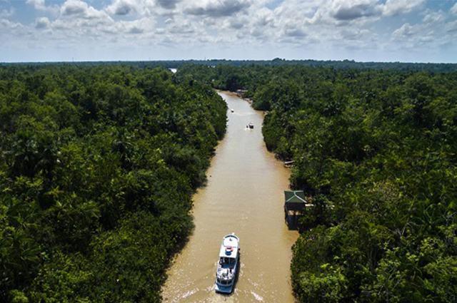 conheca-o-complexo-regional-da-amazonia