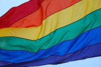 Saiba qual a diferença entre trans, cis e intersexual