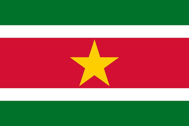 entenda-o-significado-da-bandeira-do-suriname