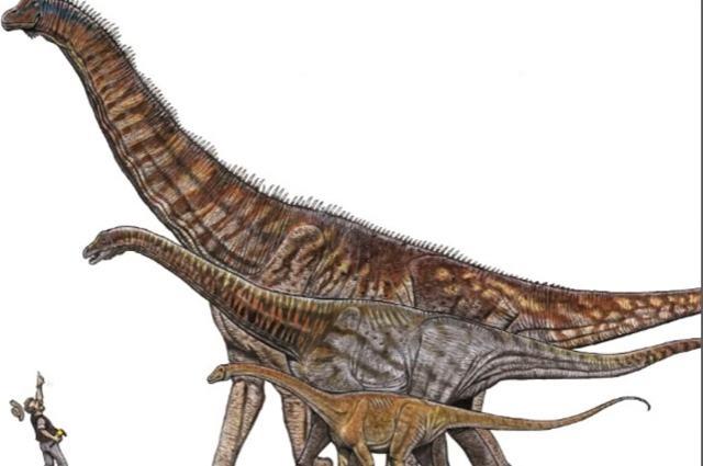 austroposeidon-magnificus-o-maior-dinossauro-do-brasil