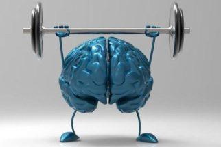 Conheça as 6 técnicas que tornam o humano mais inteligente