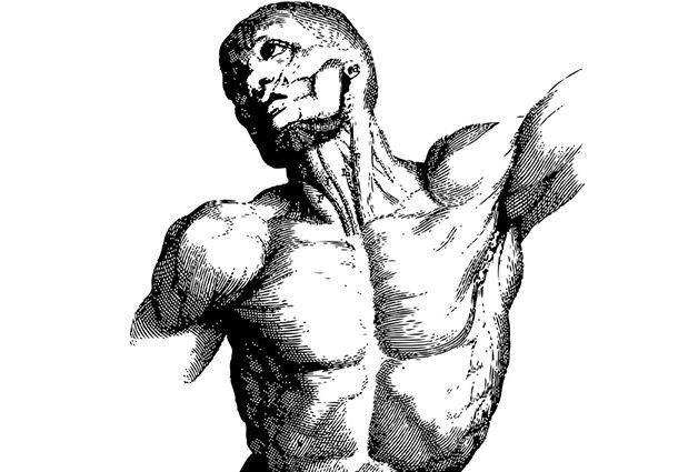 """A medicina grega antiga acreditava que o corpo alimentava-se da """"energia vital dos elementos externos"""