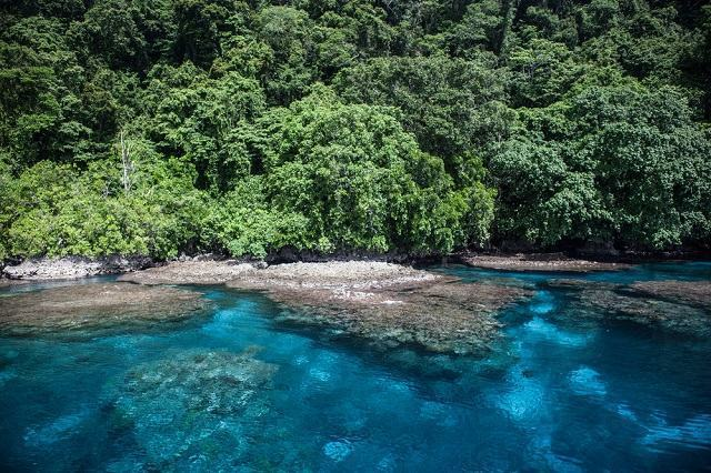 Melanésia, a ilha onde a população possui DNA diferente do resto do mundo