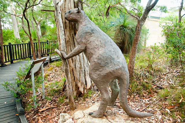 Procoptodon sculpture