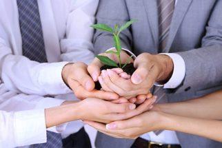 Conceito: descubra o que é e o que faz a gestão ambiental