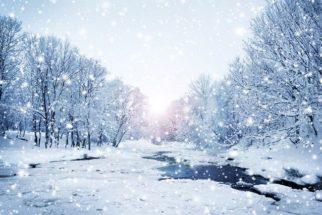 Inverno: conheça as características e curiosidades dessa estação