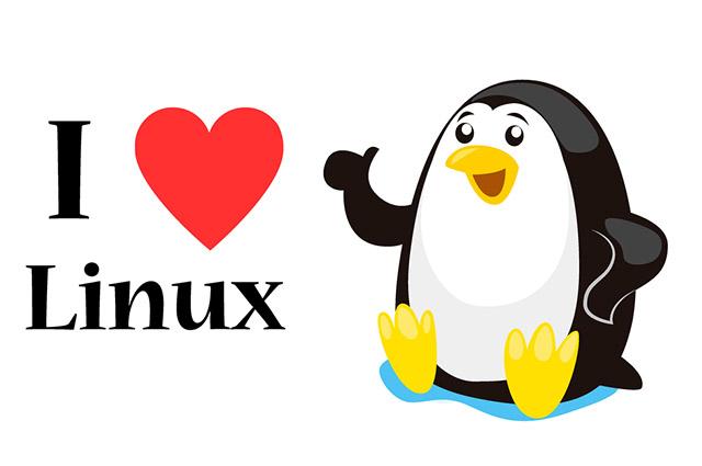 O Linux Ubuntu é conhecido por ser mais resistente a vírus
