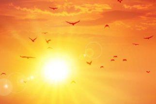 Verão, a estação mais quente do ano. Principais destinos no Brasil