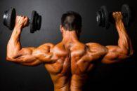 Origem: Saiba de onde vem a força dos músculos. Pesquisadores revelam