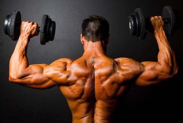 Origem: Saiba de onde vem a força dos músculos