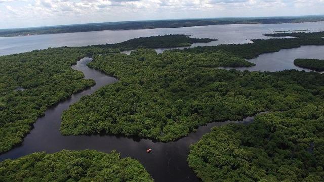 Por quais países passa o Rio Amazonas? Descubra agora