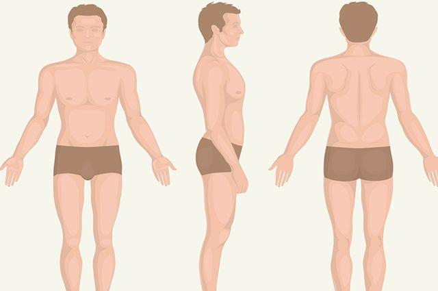 Aprenda os nomes das partes do corpo humano em inglês