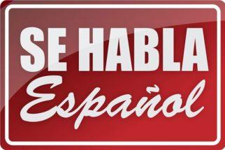 """O artigo neutro """"lo"""" do idioma espanhol"""