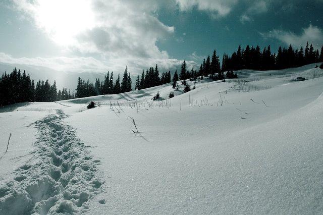 10 curiosidades sobre o frio que você não pode deixar de saber - Neve