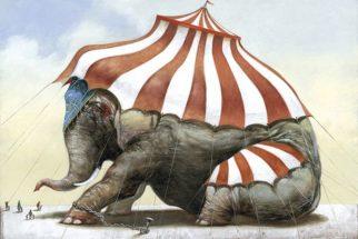 Artista espanhol retrata o destino de animais em ilustrações