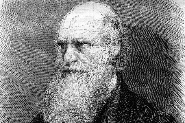 Charles Darwin foi um notório botânico, estudado até os dias de hoje