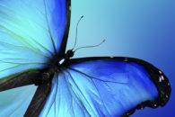 Quais são os tons da cor azul?