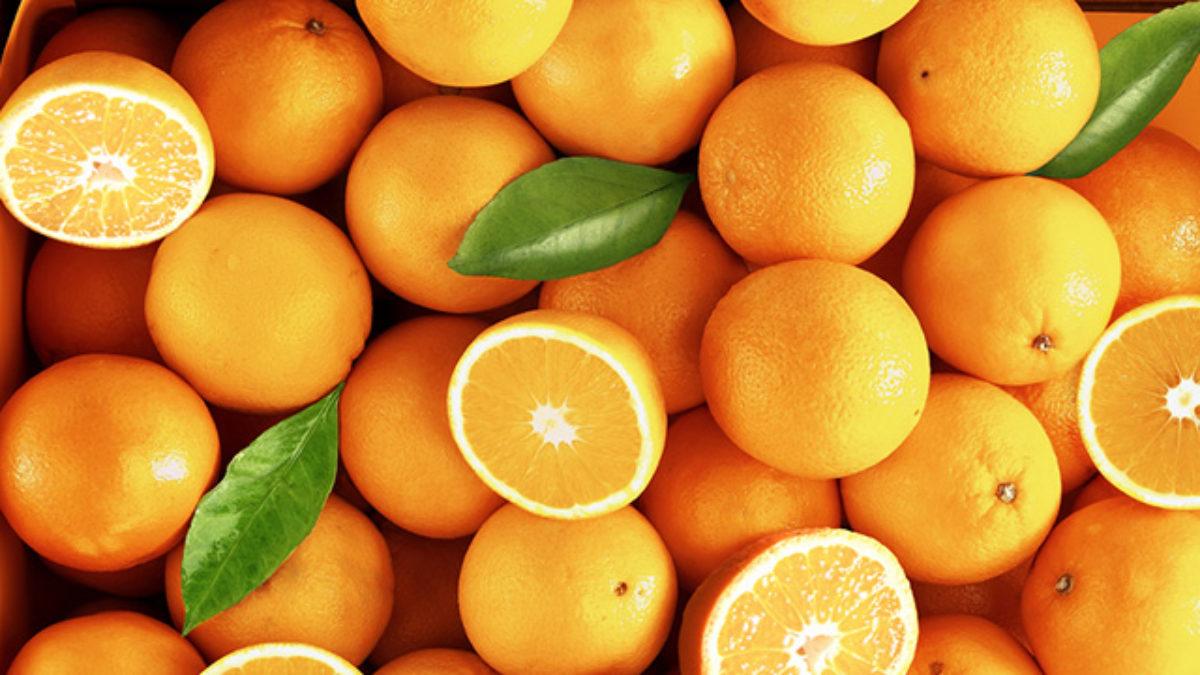 Quais são os tons da cor laranja - Estudo Prático