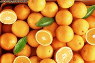 Quais são os tons da cor laranja