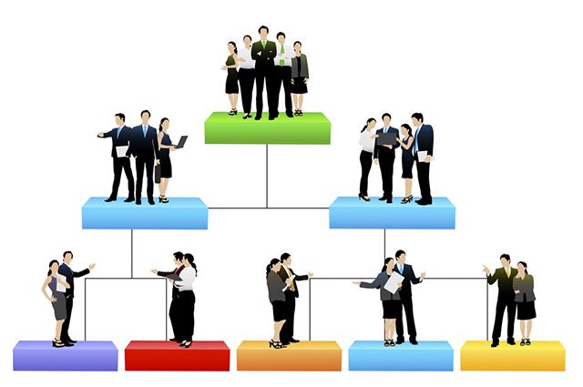 O organograma deve conter a distribuição de setores, cargos e a comunicação entre estes