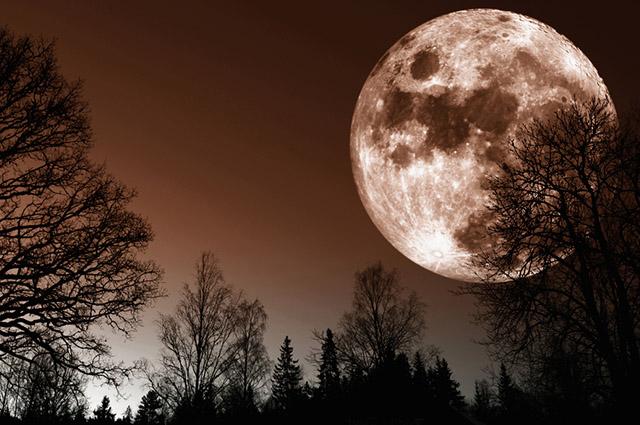 A super lua fica mais próxima da Terra e, por isso, maior e mais brilhante
