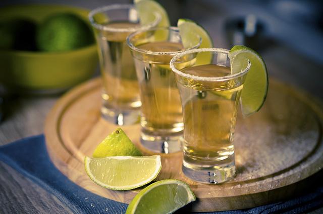 A tequila é produzida a partir da planta Agave tequilana