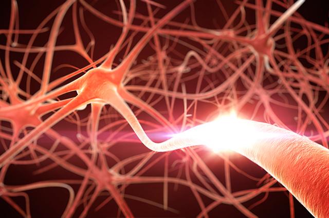 Degeneração de neurônios é a causa da ELA