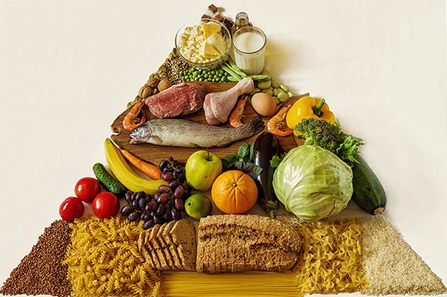 Todo tipo de organismo necessita de alimentos funcionais