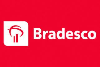Jovem Aprendiz Bradesco: Como funciona e como participar