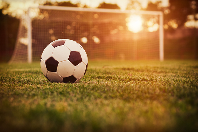 A FIFA organiza campeonatos de futebol, futsal e futebol de areia, femininos e masculinos