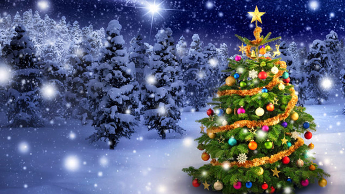 Conheca Os Simbolos Do Natal Estudo Pratico