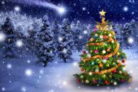 Conheça os símbolos do Natal