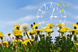 Quando começa o horário de verão?