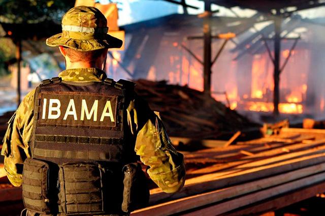 Funcionário do Ibama olhando incêndio