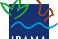 O que é o Ibama? O que faz e como funciona