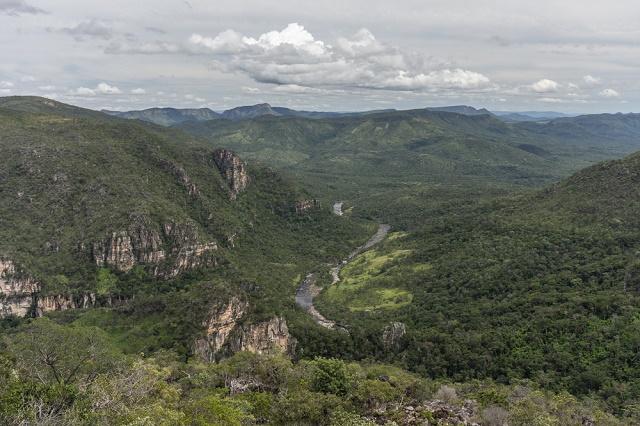 Imagem aérea do Cerrado