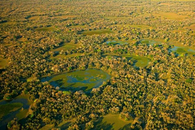 Visão aérea do Pantanal