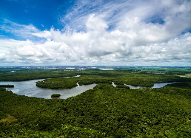 Imagem aérea da Amazônia
