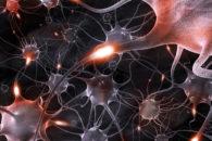Neurônios: o que são, tipos e suas funções