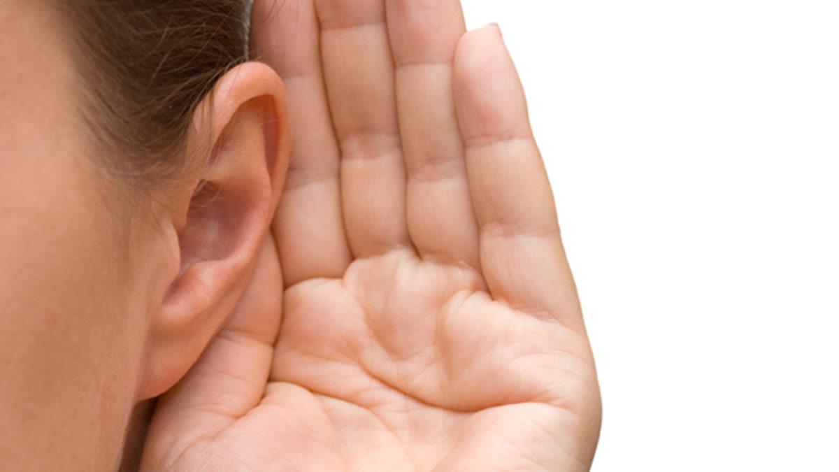 Ossos Do Ouvido Nomes E Funções Estudo Prático