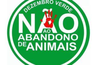 Dezembro verde e a conscientização sobre o abandono de animais