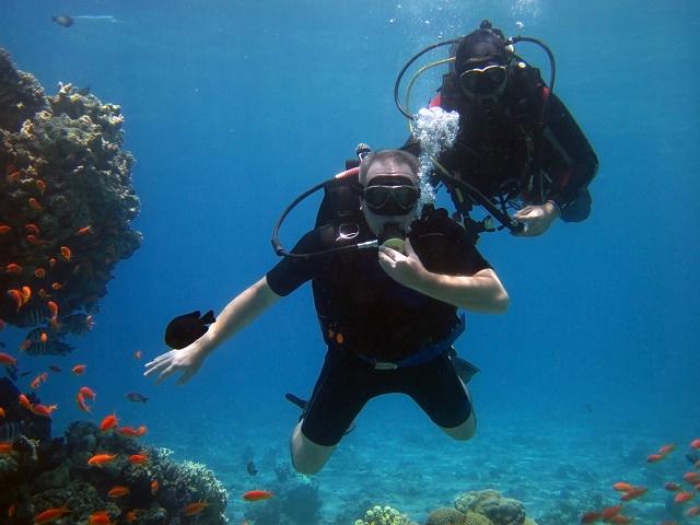Dois mergulhadores no mar