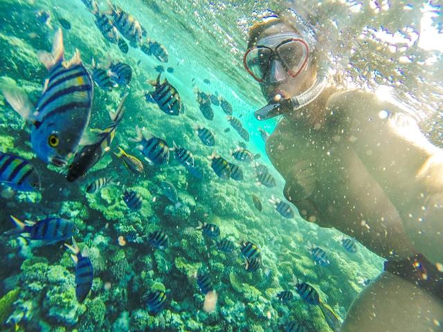 Mergulhador e peixes